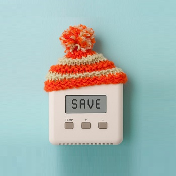 Optimal thermostat<br /> setting for winter